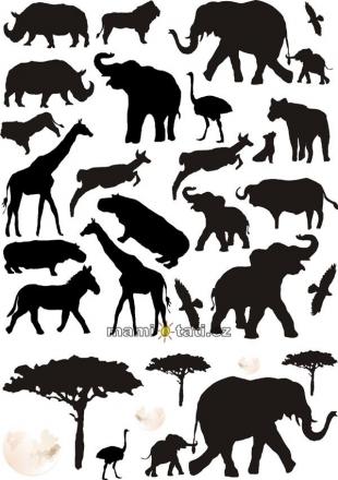NELLYS Nálepky, dekorace na stěnu 70x100 cm - Afrika
